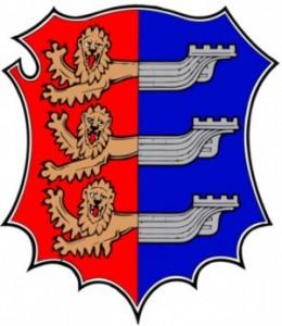Cinque Ports Banner